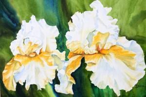 Iris-aquarelle-40x30-300x200