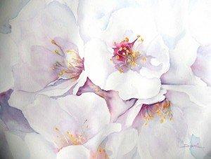 Copie de 277. les fleurs de l'amandier aquarelle 50x40cm