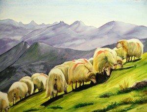 253.les moutons des pyrénées aquarelle 70x50cm