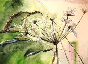 267.Les herbes aquarelle 30x40cm