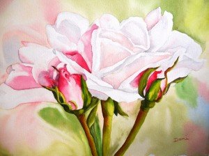 Copie de 250.Roses Rosa aquarelle 50x40cm