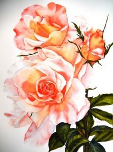 Copie de 293. Les roses du jardin aquarelle 70x50cm
